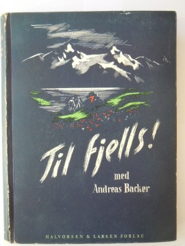 Til fjells (Andreas Backer)